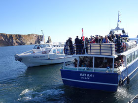 Urlaub in Quebec: Volle Tour-Boote in Percé.