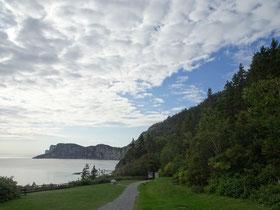 Urlaub in Quebec: Blick auf Bäume, Meer und Küste beim Cap-Bon-Ami auf der Ostseite des Forillon Nationalparks.