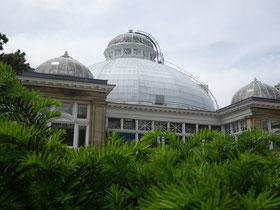 Aussenansicht von Allan Gardens Conservatory.