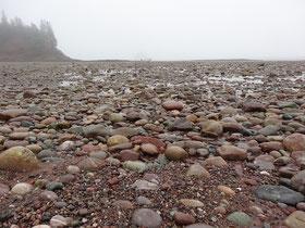 Nebel in St. Martins, New Brunswick: Bei Ebbe kann man Wanderungen am Strand unternehmen.