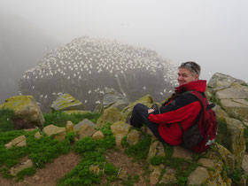 Urlaub in Neufundland: Selfie mit hunderten Vögeln in Cape St. Mary's Ecological Reserve.