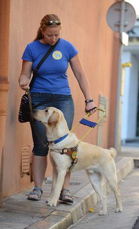 Sandrine LEBRETON, éducatrice canine