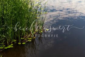 beachtenswert fotografie, Schwabstedt, Treene, Wasserspiegelung, Fotokunst