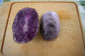 Kartoffel Blauer Schwede, aufgeschnitten