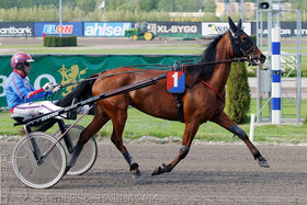 Reve d'Amour (Torbjörn Jansson) in Solvalla