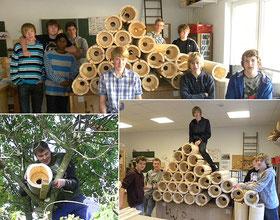 Schüler bauen Steinkauzröhren