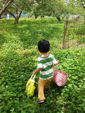 子ども 農業体験 おととわ 自然栽培 無農薬無肥料