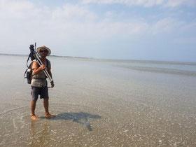 Max guide en Baie vous propose des sorties nature à pied, tous les jours
