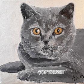 Katzenporträt, Acryl auf Leinwand, 20x20cm