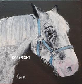 Pferdeporträt, Acryl auf Leinwand, 20x20cm