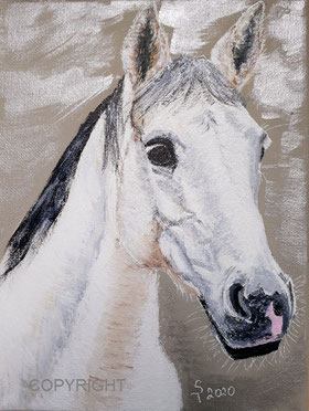 Pferdeporträt, Acryl auf Leinwand, 18x24 cm
