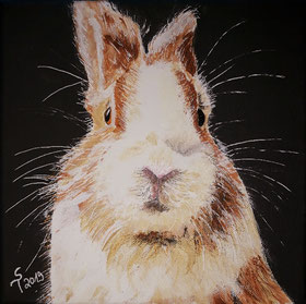 Hasenporträt, Acryl auf Leinwand, 20x20cm