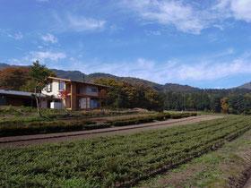平成27年度 松本市都市景観賞受賞 土肥農園 news設計室 建築家:丸山和男