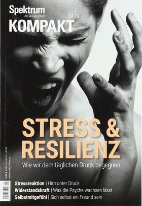 Spektrum Kompakt: Stress und Resilienz - Wie wir dem täglichen Druck begegnen