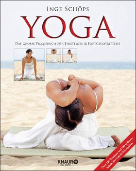 Yoga - Das große Praxisbuch für Einsteiger & Fortgeschrittene: Über 120 Übungen und 700 brillante Schritt-für-Schritt-Fotografien 2020 von Inge Schöps - Yoga Bestseller