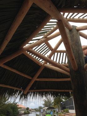 Palmenblätter für den Schirm