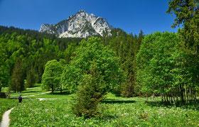 Bayern , Allgäu , Alpen , Berge , Wald , Himmel , Landschaft , Grün , Wandern , Hüttentour , Trekking , Frühling , Germany, Mountains , Landscape , Trekking , Bleckenau , Füssen