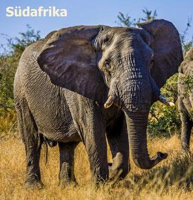 Bildband Südafrika, Reiseführer Südafrika