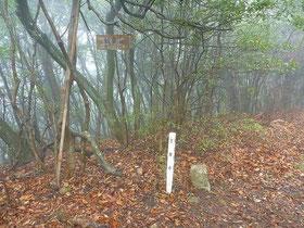 生口島 観音山 三角点