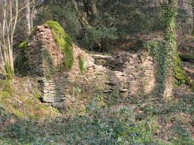 Ruine d'une maison de charbonnier ou de mendiant, Koad ar Vouster en Landeleau