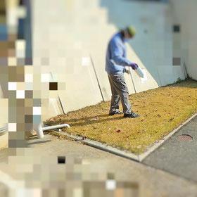 シバキープ 芝生用除草剤