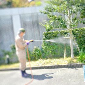 植木 消毒 害虫駆除予防