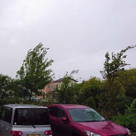 台風 typhoon