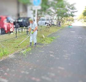 草刈り 機械刈り