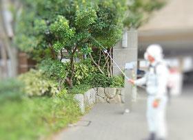 植木の消毒