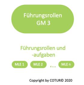 Leadershape by COTUR® - Führungsrollen und Führungsaufgaben -  Grundlagen Management