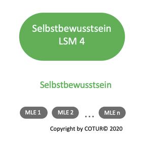 Leadershape by COTUR® - Selbstbewusstsein -Leader-Strategie