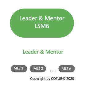 Leadershape by COTUR® - Leader & Mentor - Leader-Strategie