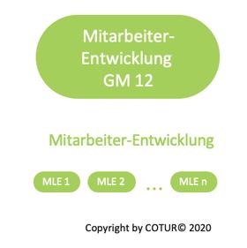 Leadershape by COTUR® - Mitarbeiterentwicklung -  Grundlagen Management