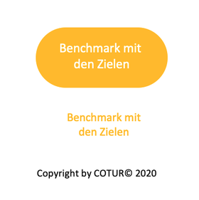 Leadershape by COTUR® - Benchmark mit den Zielen