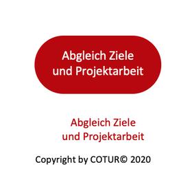 Leadershape by Cotur® - Abgleich Ziele und Projektarbeit