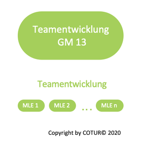 Leadershape by COTUR® - Teamentwicklung -  Grundlagen Management