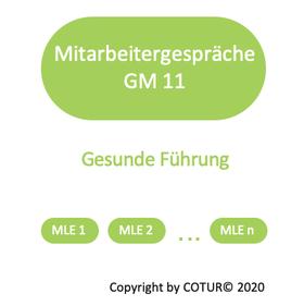 Leadershape by COTUR® - Mitarbeitergespräche -  Grundlagen Management