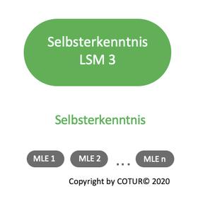 Leadershape by COTUR® - Selbsterkenntnis - Leader Strategie