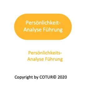 Leadershape by COTUR® - Persönliche Analyse Führung