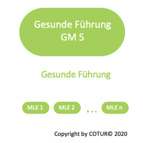 Leadershape by COTUR® - Gesunde Führung -  Grundlagen Management