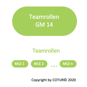 Leadershape by COTUR® - Teamrollen -  Grundlagen Management