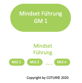 Leadershape by COTUR® - Mindest Führung - Grundlagen Management