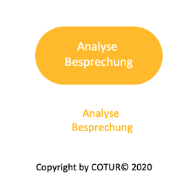 Leadershape by COTUR® - Analyse Besprechung
