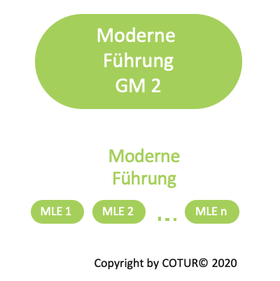 Leadershape by COTUR® - Moderne Führung  Grundlagen Management