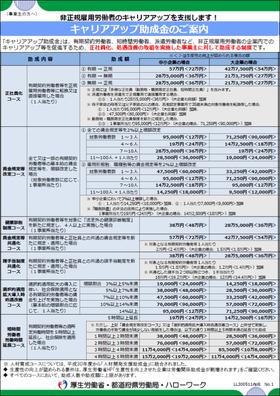 キャリアアップ助成金のご案内(平成30年度)