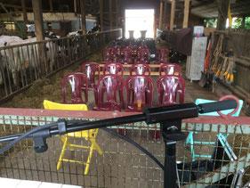 Kultur mit Kuh im Wahrenholzer Kuhstall