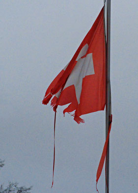 21. Januar 2015 - Die Fahne, ein Symbol
