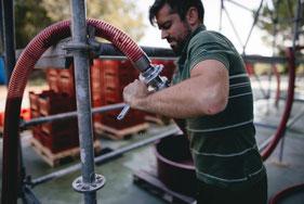 Giovanni Montresor hard aan het werk in zijn wijnmakerij
