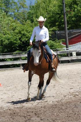 Südtirol Trail / Disziplin Horsemanship: Prüfung in 2 Teilen, bei der die Leistungen des Reiters beurteilt werden. Priska Kelderer; Reiten in Kaltern am See; Reitschule; Pferde; Quarterhorse