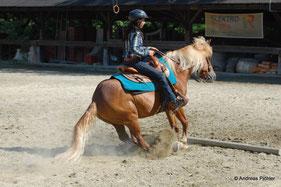 Südtirol Trail / Disziplin Superhorse: Auch Slidingstopps gehören zum Programm. Priska Kelderer; Reiten in Kaltern am See; Reitschule; Pferde; Haflinger